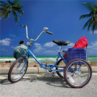 Freedom Adult Tricycle