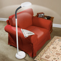 Balanced Spectrum® Floor Lamp