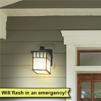 Emergency Flasher Bulb