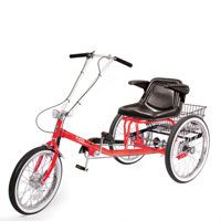 Single Seat Adult Tricycle